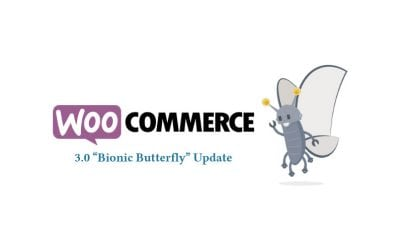 WooCommerce 3.0 Major Update Released